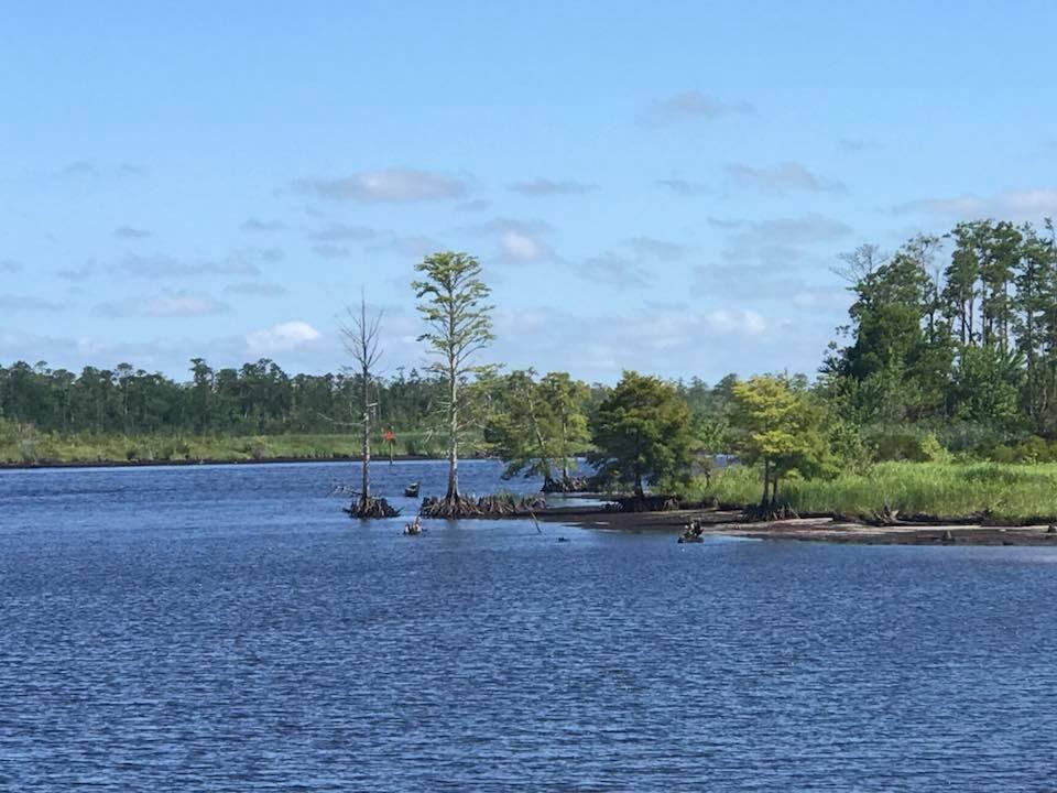 Cruising North Landing River