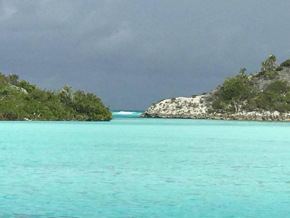 Shroud - mangrove dinghy ride, view through the cut