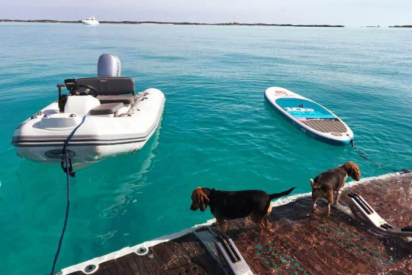 Cagney and Lacey - swim platform - Compass Cay