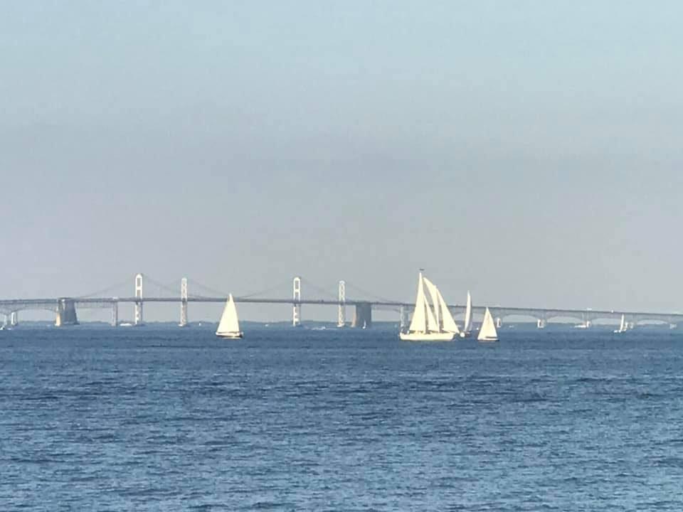 Bay Bridge view from the marina